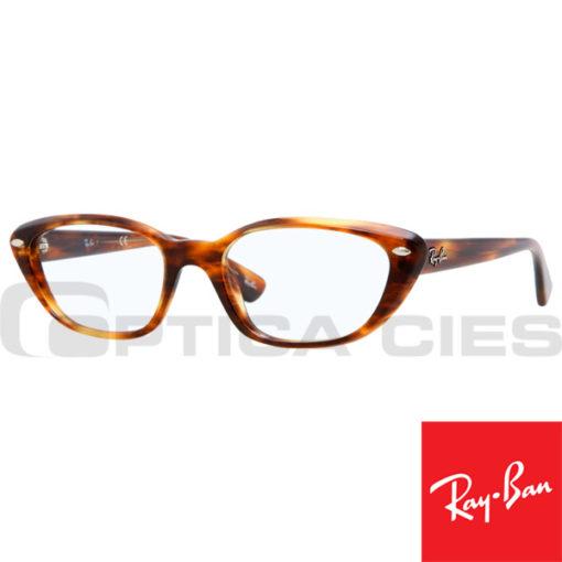 RayBan RB5242 2144