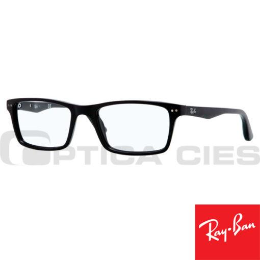 RayBan RB5288 2000